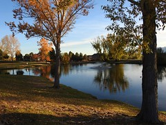 Reflection Pond at Briargate ~ Colorado Springs (Explored) (Jane Lazarz) Tags: briargate reflectionpond briargatecoloradosprings janeelizabethlazarz walkingcolorado nikon p900 nikonp900 coloradosprings colorado janelazarz breathtakingcolorado sunset goldensunset water blue pond explore inexplore explored
