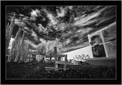 Las Tricias, Garafía, Isla de La Palma, canarias (Bartonio) Tags: 720nm bw blanconegro canaryislands cementerio garafía graveyard infrared ir islascanarias lapalma lastricias macro modified monochrome nikkor18mm35 sonya7ir