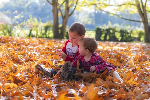 Autumn child's play