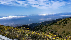On Top Of The World (alsimages1 - Thank you for 860.000 PAGE VIEWS) Tags: food wine song dance flowers floral festivals mountains valleys levada walks swimming fishing santa maria funchal city botanical gardens seashore scenic views sailing boats yachts hotels apartments shopping ponta de são lourenço boat building sky sea beach