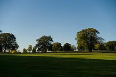 Brockwell park evening (Screveton) Tags: meike 28mm