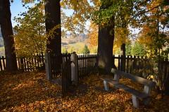 colours of the autumn (JoannaRB2009) Tags: góraoliwnawbolesławowie bolesławów holy sacred fence gate open bench trees autumn fall nature landscape view lowersilesia dolnyśląsk polska poland