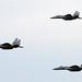 F-15Js, variant