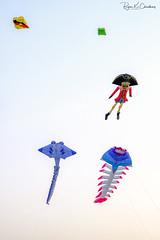 Qatar Snapshot ... (Bijanfotografy) Tags: fuji fujifilm fujixt2 fujifilmxf56mm12r xtrans doha dohaqatar qatar aspireparkqatar aspirepark street streetphotography outdoor kitefestival kites