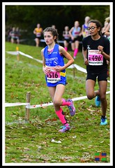 Chloe Phillips (4) (nowboy8) Tags: nikon nikond500 xc nationalxcrelays mansfield berryhillpark notts crosscountry relays relay woods cleethorpesac cleeac team