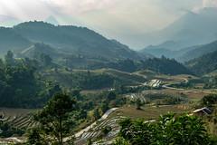 Sapa Trekking (rbrands) Tags: wandern wanderung sapa vietnam vn