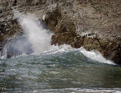 Breaking Waves (Greatest Paka Photography) Tags: davenport sharkfincove surfsail beach shore