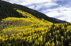 Colorado_fall_slope