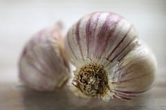 The Benefits of Garlic (Through Serena's Lens) Tags: macromondays remedy garlic bulb dof macro texture tabletop stilllife canoneos6dmarkii