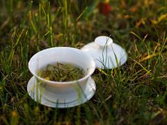 among nature (radek_k_) Tags: tea green food meal organic cup grass nature olympus zuiko colour