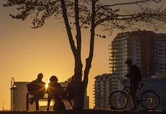 Take The Time To Enjoy The Sunshine (Clayton Perry Photoworks) Tags: vancouver bc canada fall autumn downtown city explorebc explorecanada skyline people silhouettes bench falsecreek