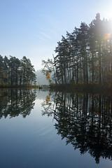 KAVO3075-Edit-Edit-1 (david.kavolis) Tags: autumn forest nature pentax k3 sigma1835