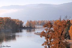 Little River. between Little Shuswap Lake and Shuswap Lake, BC. Note the fishermen at the river. (clive_bryson) Tags: littleriver britishcolumbia shuswap canada river trees fall autumn clivebryson