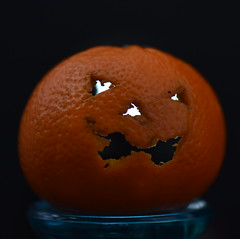 Macro Monday, Trick Or Treat (rq uk) Tags: rquk nikon d750 nikond750 afsvrmicronikkor105mmf28gifed macromonday trickortreat mandarin orange