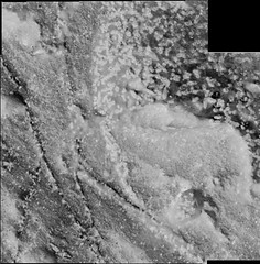 Specked Rocks and Veins, variant (sjrankin) Tags: 2november2018 edited nasa mars msl curiosity galecrater closeup dust sand panorama vein lightcolored speckled rocks grayscale
