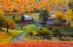 Fall & Rock 'n' Roll (Ania Tuzel Photography) Tags: autumnpalette fall newengland sleepyhollow aerosmith farm woodstock ruralscene