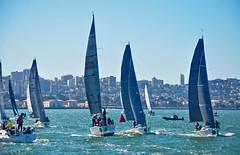 Sails on the Bay (James Matuszak) Tags: sausalito sanfrancisco sanfranciscobay sailboats rolexbigboatseries racing race bay water shoreline city cityscape sails 2018 regatta