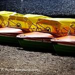 Lake Titisee, Neustadt thumbnail