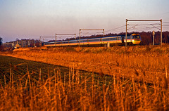 The Golden Hour at Stilton Fen. A GNER HST, mostly still in Inter-City colours, speeds past with a King's Cross bound service during December 1996. (mikul44171) Tags: goldenhour stilton stiltonfen hst intercity gner cambs fen reeds