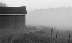 Mist behind the barn (docwiththecamera) Tags: bw fence old autumn fog morning