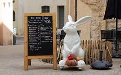 Au lapin blanc (Thethe35400) Tags: lapin rabbit kaninchen conejo coniglio coelho