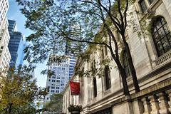 (maggiedionisi) Tags: newyork nuevayork city landscape spring public library international lion