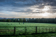 Ashton Court Estate (Martin Hewer) Tags: ashton court estate bristol landscape deer park views