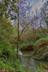 RIU SÉNIA (juan carlos luna monfort) Tags: rio puente molilavella montsia tarragona hdr paisaje naturaleza cielotormentoso nubes arboles verde nikond7200 sigma1750 calma paz tranquilidad
