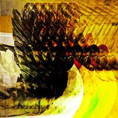 shellfish time (j.p.yef) Tags: peterfey jpyef yef digitalart photomanipulation square gesa shellfish abstract abstrakt muscheln muschelzeit