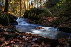 Island in the Sun (Parchman Kid (Jerry)) Tags: trippstadt exploring karlstalschlucht germany stream falls autumn jogi experience parchmankid sony a6500 wandering walk hiking walking forest woods colors