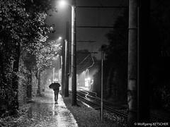 Rain walker (wketsch) Tags: night rainy availablelight wet automn street man stranger tracks monochrome bw fine art fineart skancheli