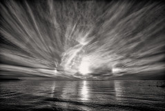 B&W Dogs (Svendborgphoto) Tags: water waterscape 14mm sigma ultrawide landscape monochrome bw blackandwhite nikon denmark nature dark sky sun svendborgphoto hirschsoerensen