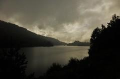 Achagate, Scotland..x (Lisa@Lethen) Tags: glen affric scotland summer achagate trees view highland weather nature loch moody rain