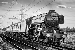 The Flying Scotsman (deltic17) Tags: alanpegler scotsman theflyingscotsman flyingscotsman 60103 4472 steam train passenger special rail railway charter excursion ecml eastcoastmainline blackwhite monochrome cnon canon5dmk3 canon againstthelight
