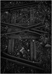 Beamish Open Air Museum, Co Durham (Pitheadgear) Tags: beamishopenairmuseum beamish countydurham northeast industrialhistory industrialarchaeology industrialmuseums coal colliery mine pit mining headgear pitheadgear winding enginehouse coalmining coalfield lancashire british coalindustry colliers collieries pits miner miners pitmen history houiller bergmann minedecharbon houille puitsdecharbon kohlenpott steinkohlenzeche steinkohlenbergwerk steinkohlenbergbau minesdecharbon charbonnage schachtanlage bergwerk bergbau fördergerüst förderturm pütt pithead headframe headstock mineheads chevalement fosse kopalnia mijn mina szyb dul schacht puitsdemines industry industrie industria rail railways blackandwhite monochrome