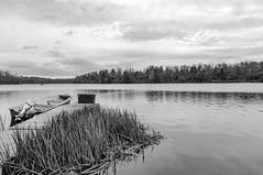 10142018-78-2 (Bill Friggle Photography) Tags: landscape landscapes statepark park ricketts glen lake lakejean stream crick