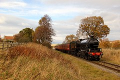 LNER 1264 - NYMR - 2018-10-25 (BillyGoat75) Tags: lner 1264 61264 thompsonb1 steamengine locomotive heritagerailway autumncolours moorgates goathland northyorkshire northyorkshiremoorsrailway