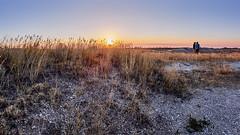 Shooting the sunrise - M5138946 (j_m_kubler) Tags: badlandsnationalpark c1 captureonepro olympusem5 olympus8mmf18fisheyepro badlands