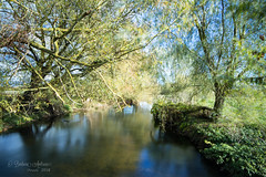 Along the river -explored 28/10/18- #143 (~ **Barbara ** ~) Tags: reflections river nene nearoundle northamptonshire water le landscape longexposure canon7dii wadenhoe