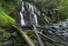 You got to go down a lot of wrong roads to find the right one. Bob Parsons (Explore) (Element1983) Tags: waterfall water nature green falls sony batis roadside vt vermont a7ii color natgeo rocks forest woods 18mm prime