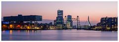 Rotterdam (Rob Schop) Tags: rotterdam sigma30mm14 le color bridge pink sonya6000 maas erasmusbrug nederland outdoor a6000 city dehef sunset