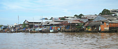 Life on the Banks of the Mekong River (Mary Faith.) Tags: mekong river vietnam life pole houses delta
