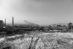 Weirton Steel #16L (rpantaleo) Tags: weirton westvirginia unitedstates us rustbelt steelmill blackandwhite weirtonsteel