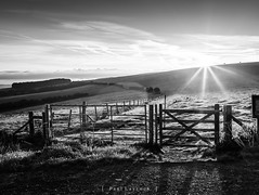 Falmer Sunrise 40/52 2018 (amipal) Tags: country countryside england f8 falmer fields gb grass greatbritain green hdr sky southdowns starburst sun sunrise sussex uk unitedkingdom manuallens voigtlander nokton 175mm photoaweek photo52