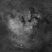 NGC7822 (Alejandro Pertuz) Tags: nebula space cosmos hydrogen astronomy astrophotography astrometrydotnet:id=nova2805306 astrometrydotnet:status=solved
