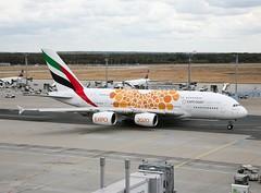Emirates                                                 Airbus A380                                           A6-EOU (Flame1958) Tags: emirates emiratesa380 airbus a380 380 a6eou expo2020 uae emiratesorangeairbus emiratesexpo2020 fra eddf flughafenfrankfurtammain fraport frankfurt frankfurtairport 0918 2018 220918 7700