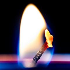 Flame On... (tmarsden35) Tags: tealight flame nikond850 candle macro sigma105