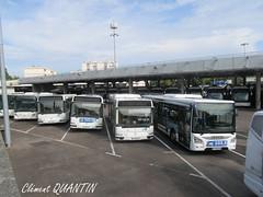 HEULIEZ BUS GX 137 - 526 - STCLM & IRISBUS Agora S - 828 et 827 et 826 - STCLM - IVECO BUS UrbanWay 12 - 423 - STCLM (Clément Quantin) Tags: dépôt parking stationnement bus autobus urbain ligne midibus standard stclm société transports commun limoges métropole sociététransportscommunlimogesmétropole tcl transportscommunlimoges heuliez heuliezbus gx 137 gx137 €6 526 eh854mz irisbus agora agoras €3 828 cs469xq 827 cm855fk 826 es322gl iveco ivecobus urbanway urbanway12 cursor cursor9 423 ey732kv