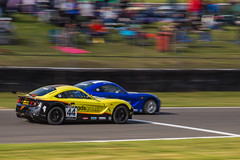 Brands Hatch BTCC (Steve M Photography) Tags: btcc brandshatch touringcars ginetta racing motorsport motorracing britishmotorsport panning circuit competition fast speed motion