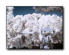 Foisor_InfraRed (nicucricu) Tags: dualiso canon 60d 80d timisoara s5 color longexposure 400d exposure long panorama eos holiday outdoors party photo tamron speedlite s3 430ex bells clousup love macro snow black outline line flashlight design outdoor nicucricu nicu cricu nature sunset water red beach portrait night flowers blue white tree green art light sun clouds landscape street summer city trees yellow lake people house car bw old new fun digital selfie weather blur infrared ir